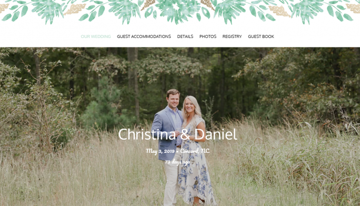 wedding website rsvp website rsvp online